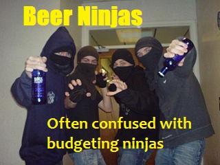 non budgeting ninjas